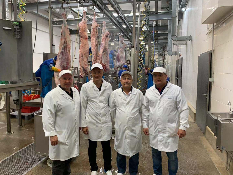 哈萨克斯坦首柜优质牛肉首次经傅总指导屠宰