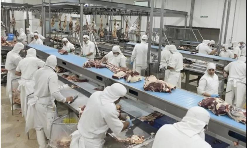 危在旦夕!阿根廷牛肉厂被迫关厂、裁员!老板快被逼疯了!